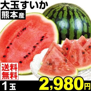 商品情報      日本一の名産地・植木町の絶品スイカ!食べ応え抜群!すいかの聖地より大玉サイズをお...