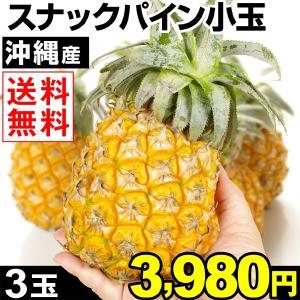 パイン 沖縄産 ちびスナックパイン 3玉 1箱 送料無料 パイナップル 小玉パイン ボゴールパイン kokkaen