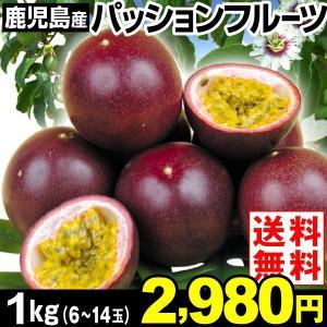 鹿児島産 パッションフルーツ 約1kg1箱 送料無料 6〜14玉 南国果実 トロピカルフルーツ kokkaen