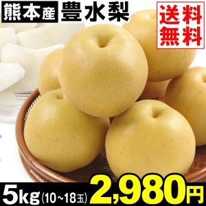 梨 熊本産 豊水梨 5kg1箱 送料無料 10〜18玉 豊水 和梨|kokkaen