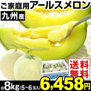 メロン ご家庭用 九州産 アールスメロン 約8kg1箱 送料無料 青肉メロン 冷蔵便 食品|kokkaen
