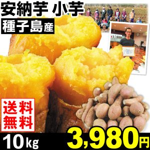 安納芋 種子島産 安納芋 小芋 10kg1箱 送料無料 さつまいも 食品|kokkaen