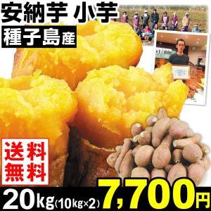 安納芋 種子島産 安納芋 小芋 20kg1組 送料無料 さつまいも 食品|kokkaen