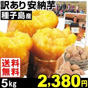 安納芋 種子島産 訳あり 安納芋 5kg1箱 送料無料 さつまいも 食品|kokkaen