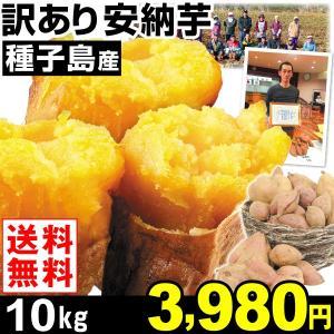 安納芋 種子島産 訳あり 安納芋 10kg1箱 送料無料 さつまいも 食品|kokkaen