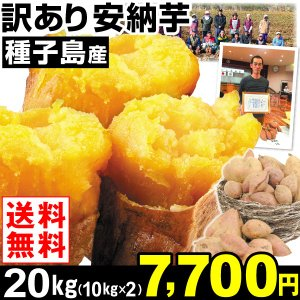 安納芋 種子島産 訳あり 安納芋 20kg1組 送料無料 さつまいも 食品|kokkaen