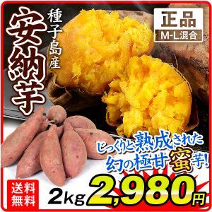 安納芋 種子島産 安納芋 【正品】 5kg1箱 M〜Lサイズ混合 送料無料 さつまいも 食品|kokkaen