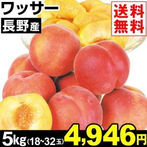 桃 長野産 ワッサー 5kg1箱 送料無料 食品|kokkaen
