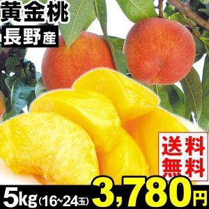 桃 長野産 黄金桃 5kg1箱 送料無料 食品|kokkaen