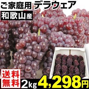 ぶどう 和歌山産 ご家庭用 デラウェア 2kg1組 送料無料 葡萄 食品 kokkaen