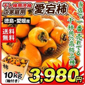柿 かき 愛宕柿 徳島産 「干柿用渋柿」 10kg 軸付き渋柿 果物 食品 国華園|kokkaen