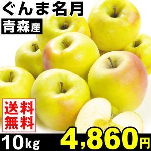 りんご 青森産 ぐんま名月 10kg1箱 黄色りんご 送料無料 林檎  食品|kokkaen