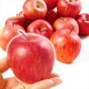 りんご 青森産 ご家庭用 ちびふじ 10kg1箱 送料無料 林檎 食品【2018年度新物】|kokkaen