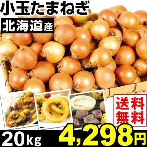 たまねぎ 北海道産 小玉 たまねぎ 20kg1組 送料無料 玉ねぎ 野菜 食品|kokkaen