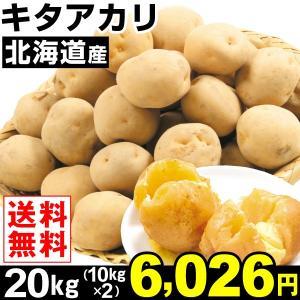 じゃがいも 北海道産 キタアカリ 20kg1組 送料無料 じゃが芋 野菜 食品|kokkaen