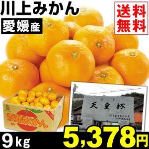 みかん 愛媛産 川上みかん 9kg1箱 送料無料 蜜柑 食品|kokkaen