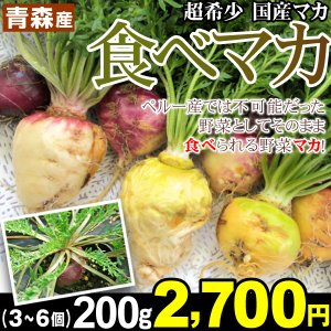 山菜 青森産 食べマカ 200g(3〜6個) 【数量限定】希少な生食マカ ベジタブル 活力の宝庫 必須アミノ酸 冷蔵便|kokkaen