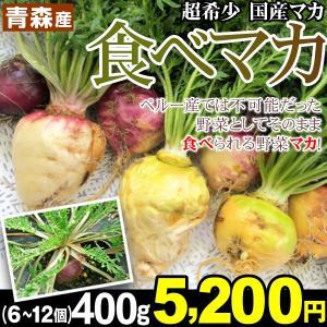 山菜 青森産 食べマカ 400g(6〜12個) 【数量限定】希少な生食マカ ベジタブル 活力の宝庫 必須アミノ酸 冷蔵便|kokkaen