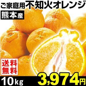 みかん 熊本産 ご家庭用 不知火オレンジ 10kg1箱 送料無料 食品 kokkaen
