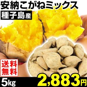 安納芋 種子島産 安納こがねミックス 5kg1組 送料無料 ご家庭用 芋 食品|kokkaen