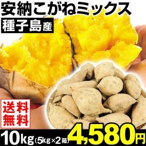 安納芋 種子島産 安納こがねミックス 10kg1組 送料無料 ご家庭用 芋 食品|kokkaen