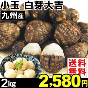 サトイモ 九州産 小玉 白芽大吉 2kg1組 送料無料 野菜 食品|kokkaen