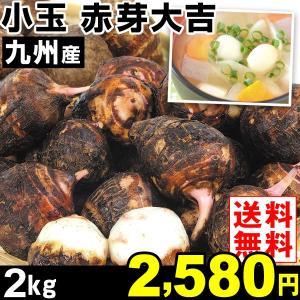 サトイモ 九州産 小玉 赤芽大吉 2kg1組 送料無料 野菜 食品|kokkaen