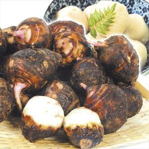 サトイモ 九州産 小玉 赤芽大吉 4kg1組 送料無料 野菜 食品|kokkaen