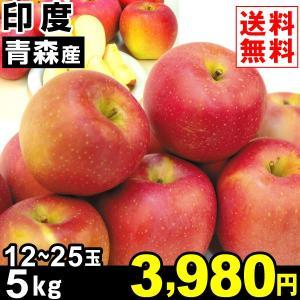 りんご 青森産 印度 5kg1箱 送料無料 林檎 食品|kokkaen