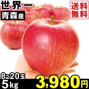 りんご 青森産 世界一 5kg1箱 送料無料 林檎 食品|kokkaen