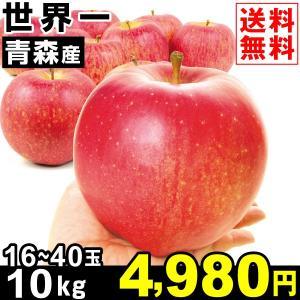 りんご 青森産 世界一 10kg1箱 送料無料 林檎 食品|kokkaen