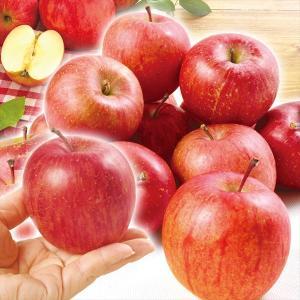 りんご 青森産 葉とらずちびふじ 10kg1箱 送料無料 ご家庭用 林檎 食品|kokkaen