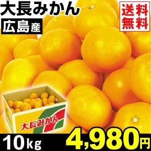 みかん 広島産 大長みかん 10kg1箱 送料無料 食品