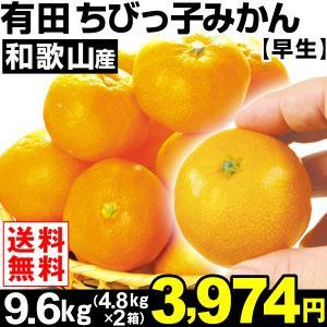 みかん 和歌山産 有田ちびっ子みかん・早生 9.6kg1組 送料無料 ご家庭用 食品 kokkaen
