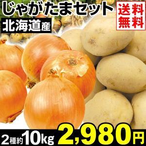 たまねぎ 北海道産 じゃがたまセット 2種約10kg1組 送料無料 玉ねぎ キタアカリ 野菜 食品|kokkaen