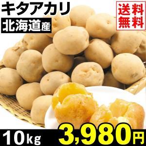 じゃがいも 北海道産 キタアカリ 10kg1組 送料無料 野菜 食品 kokkaen