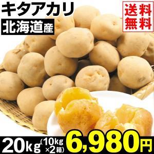 じゃがいも 北海道産 キタアカリ 20kg1組 送料無料 野菜 食品 kokkaen