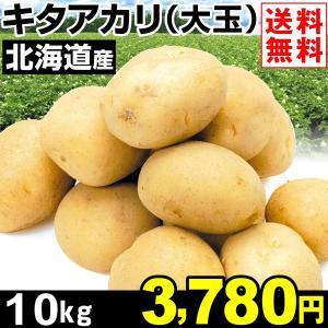 じゃがいも 北海道産 キタアカリ(大玉) 10kg1組 送料無料 野菜 食品 kokkaen