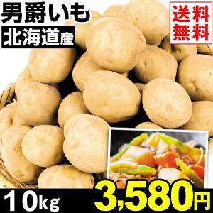 じゃがいも 北海道産 男爵いも 10kg1組 送料無料 野菜 食品 kokkaen
