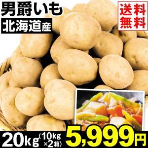 じゃがいも 北海道産 男爵いも 20kg1組 送料無料 野菜 食品 kokkaen