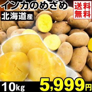 じゃがいも 北海道産 インカのめざめ 10kg1組 送料無料 野菜 食品 kokkaen