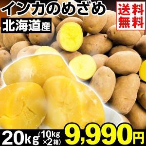 じゃがいも 北海道産 インカのめざめ 20kg1組 送料無料 野菜 食品 kokkaen