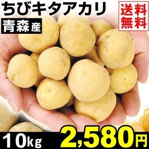 じゃがいも 青森産 ちびキタアカリ 10kg1箱 送料無料 野菜 食品 kokkaen