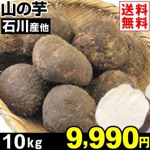 やまいも 石川産他 山の芋 10kg1組 送料無料 野菜 食品|kokkaen