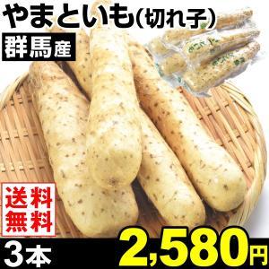 やまいも 群馬産 やまといも (切れ子) 3本1組 送料無料 野菜 食品|kokkaen