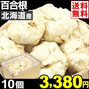 ゆりね 北海道産 百合根 10個1組 送料無料 野菜 食品|kokkaen