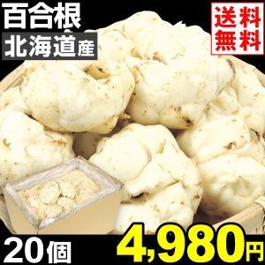 ゆりね 北海道産 百合根 20個1組 送料無料 野菜 食品|kokkaen