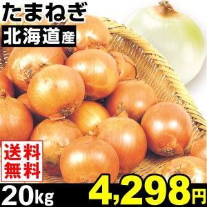 玉ねぎ 北海道産 たまねぎ 20kg 1箱 送料無料 2L・L大サイズ 野菜 食品|kokkaen
