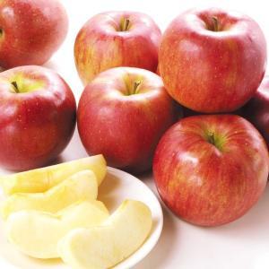 りんご 青森産 大特価 シナノスイート 10kg1箱 送料無料 食品 グルメ|kokkaen