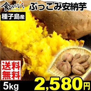 安納芋 種子島産 ふぞろい安納芋 5kg1箱 送料無料 ご家庭用 さつまいも 数量限定|kokkaen